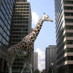 Giraffe in city street [News]